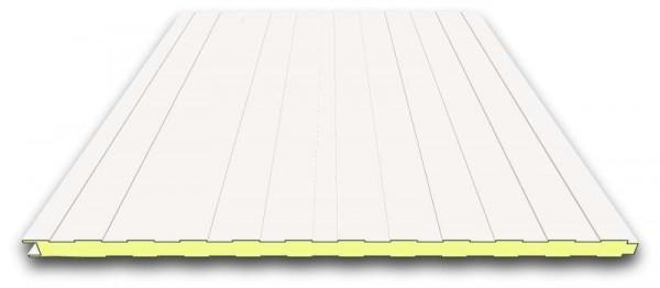 40 mm Sandwichplatten Wand | RAL 9002 (grauweiß)