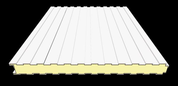 100 mm Sandwichplatten Wand | RAL 9002 (grauweiß)