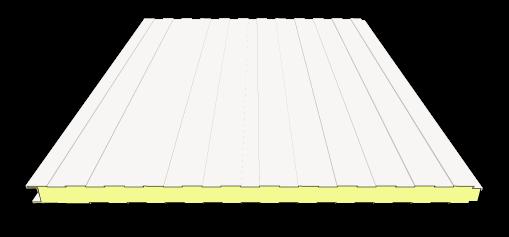 60 mm Sandwichplatten Wand | RAL 9002 (grauweiß)
